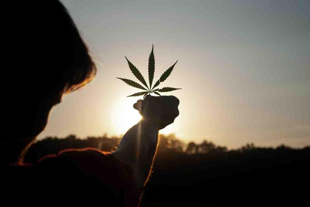 Comment arrêter de fumer du cannabis