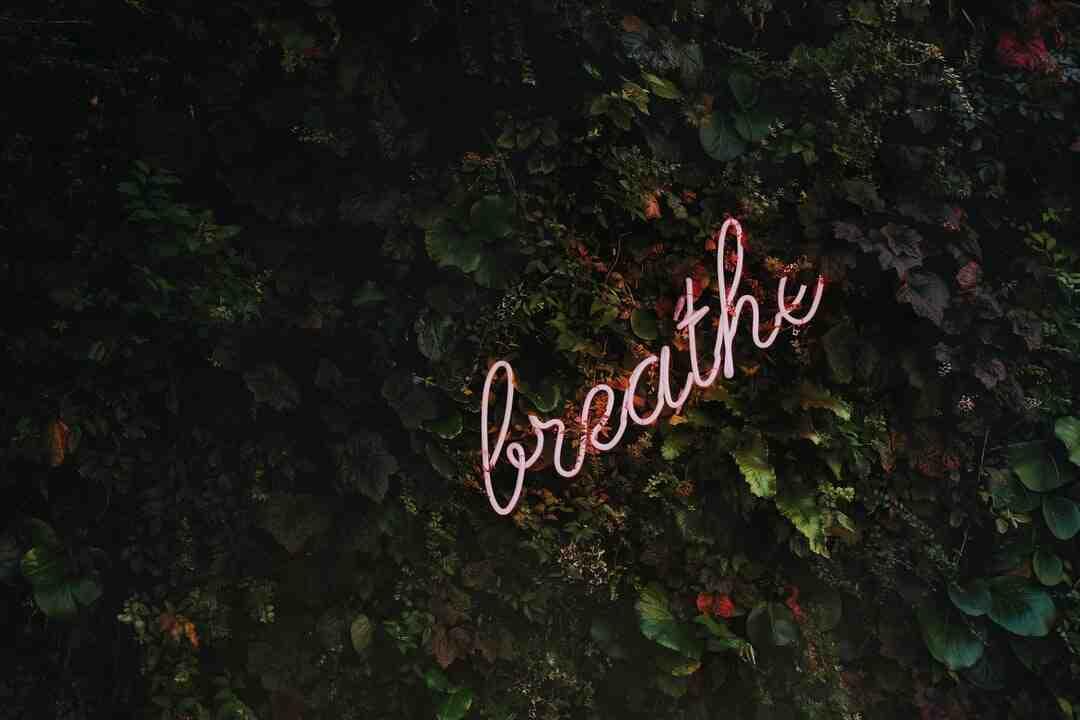 Comment nettoyer ses poumons avant d'aller courir