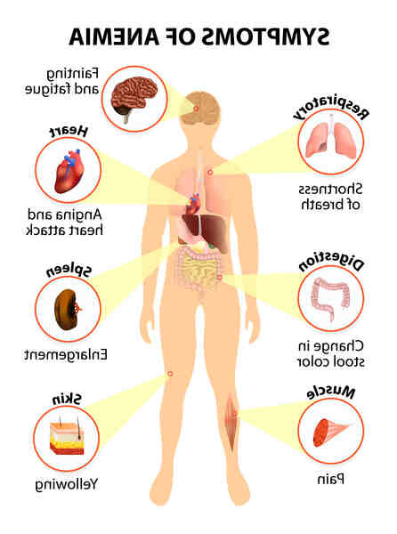 Comment savoir si l'on est anémique