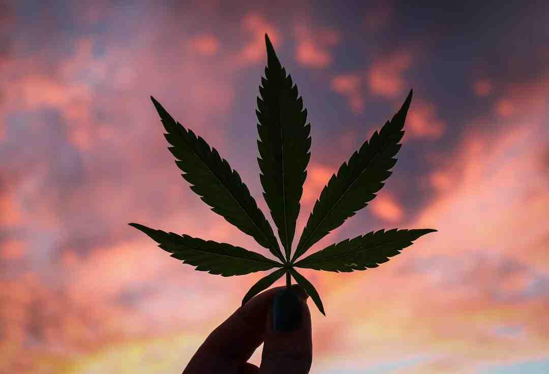 Comment se sevrer de cannabis